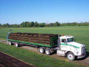 Lapeer County Sod Loaded Truck