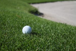 Best Turf grass for golf courses in Michigan.