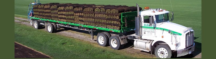 Pontiac MI Sod Farm turfgrass supplier